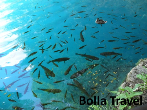 Bolla_Travel29.jpg