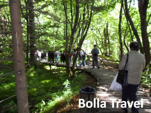 Bolla_Travel3.jpg